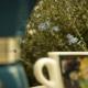 Kwaśna kawa - podejście psychologiczne