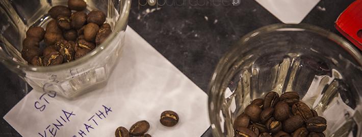 amerykańska kawa - ziarna