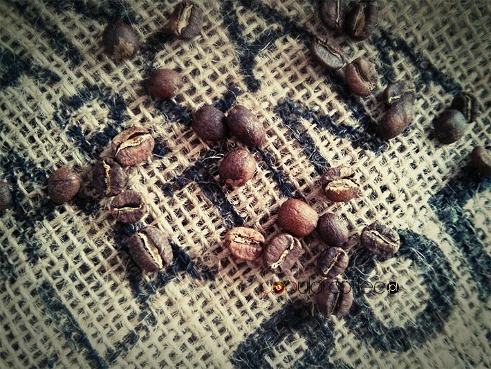 Kawa speciality – zawsze elitarna?