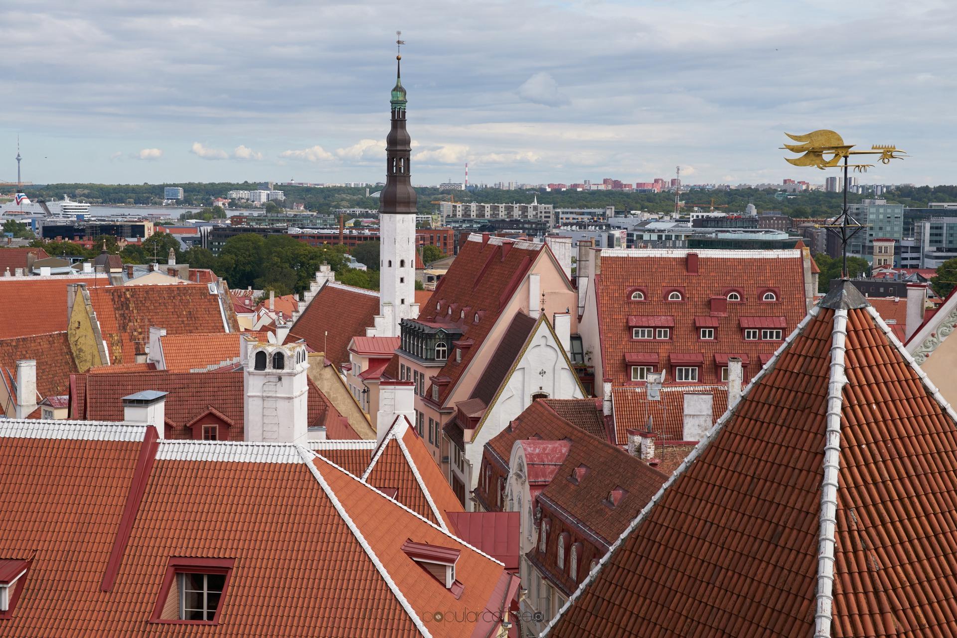 Nadbałtycka wyprawa – Wilno, Ryga i Tallin po 24 godziny.