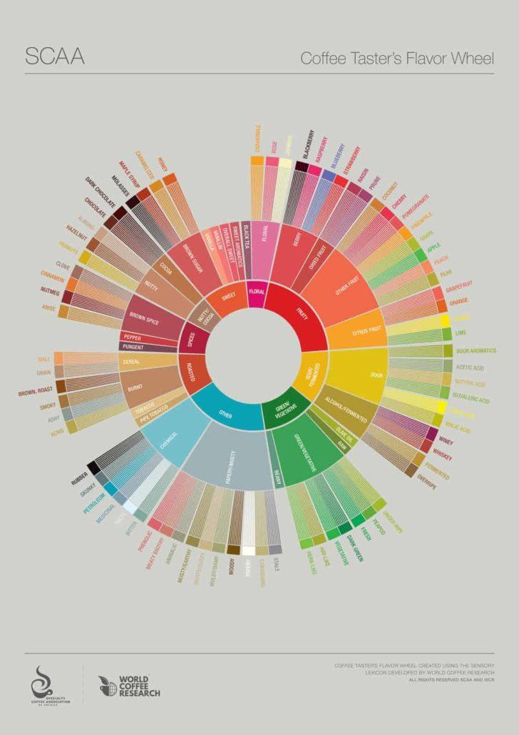 flavour wheel koło smaków